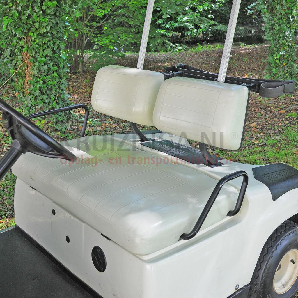 golfwagen yamaha f r 2 personen elektrisch gebraucht. Black Bedroom Furniture Sets. Home Design Ideas