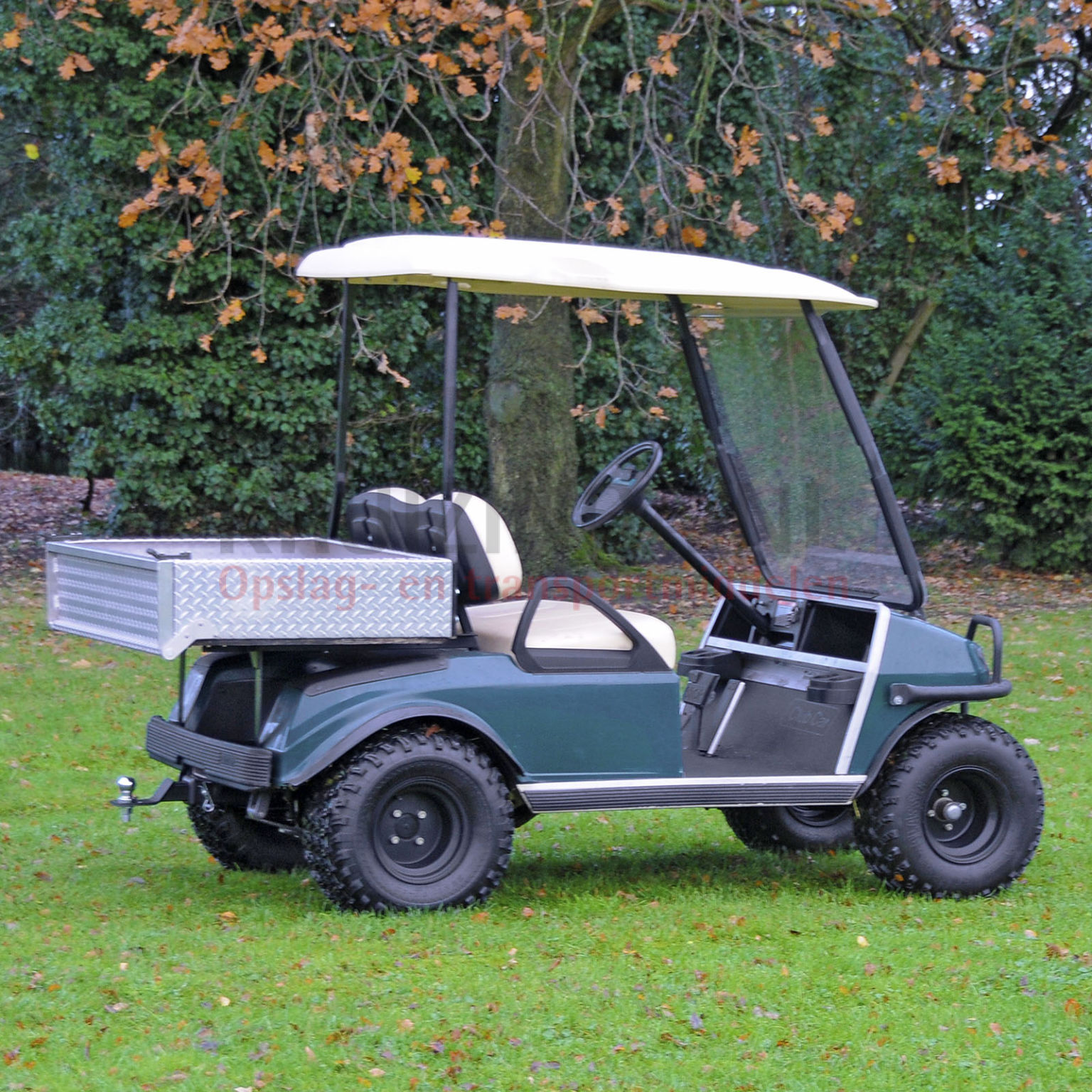 golfwagen club car lynx f r 2 personen benzin motor. Black Bedroom Furniture Sets. Home Design Ideas